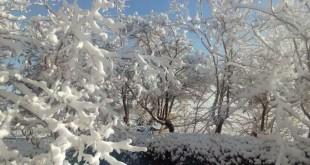 برف 2